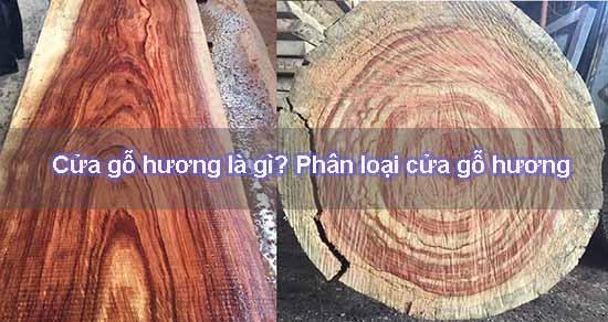 Phân loại gỗ giáng hương